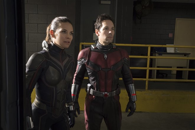 Ant-Man and The Wasp Photo 8 - Large