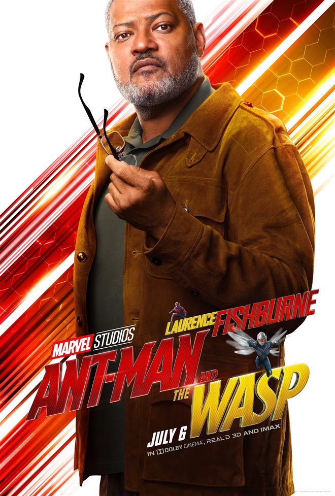 Ant-Man and The Wasp Photo 38 - Large