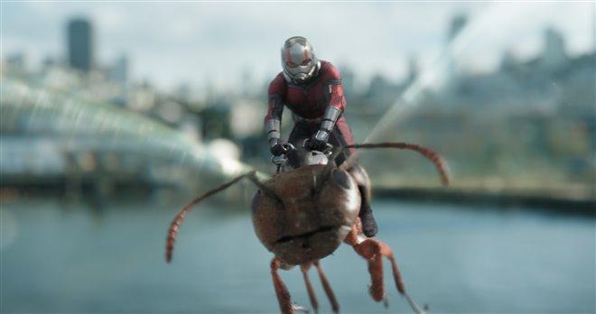 Ant-Man et la Guêpe Photo 10 - Grande