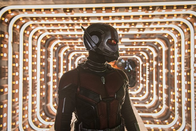 Ant-Man et la Guêpe Photo 24 - Grande