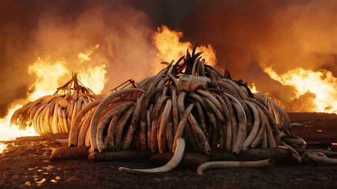 Anthropocene: The Human Epoch Photo 5 - Large