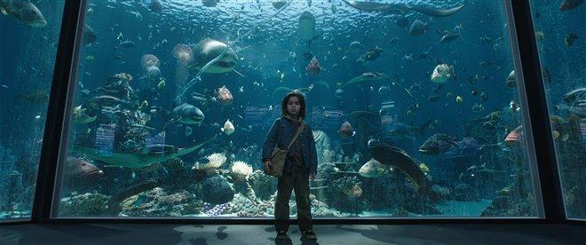 Aquaman (v.f.) Photo 13 - Grande