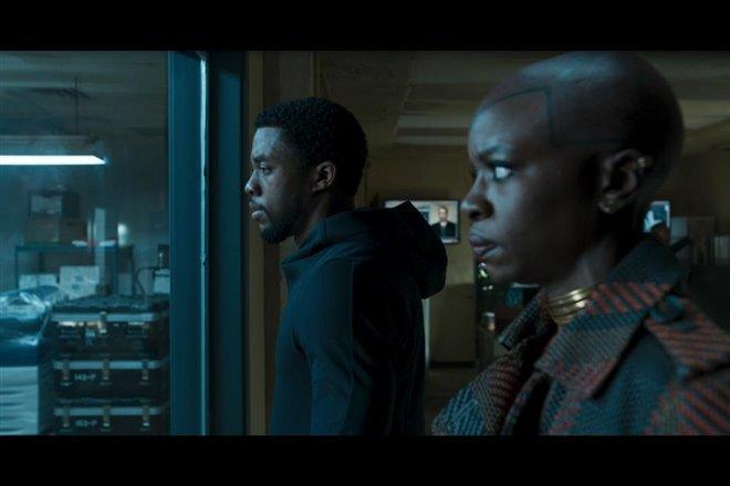 Black Panther Photo 10 - Large