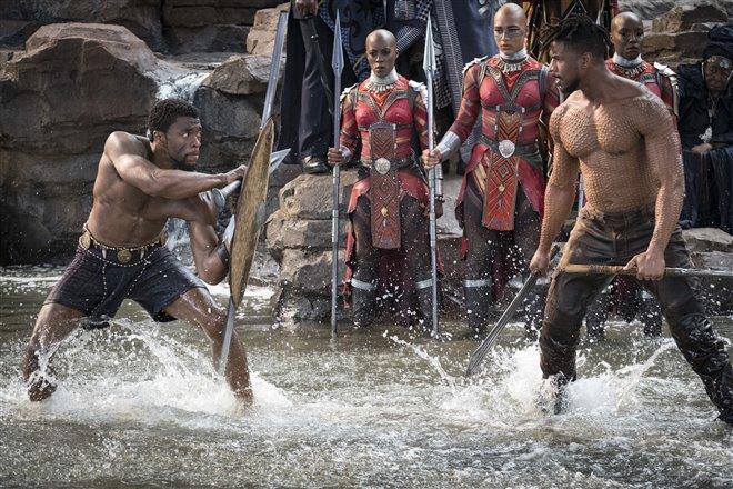 Black Panther Photo 21 - Large