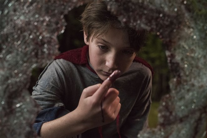 Brightburn : L'enfant du mal Photo 5 - Grande