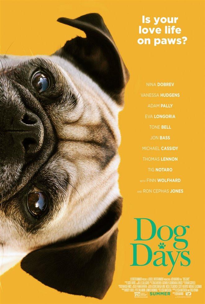 Dog Days Photo 13 - Large