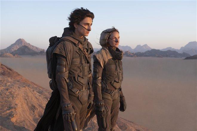 Dune Photo 1 - Large