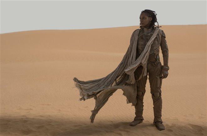 Dune Photo 5 - Large