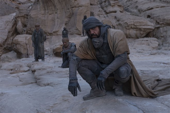 Dune Photo 9 - Large