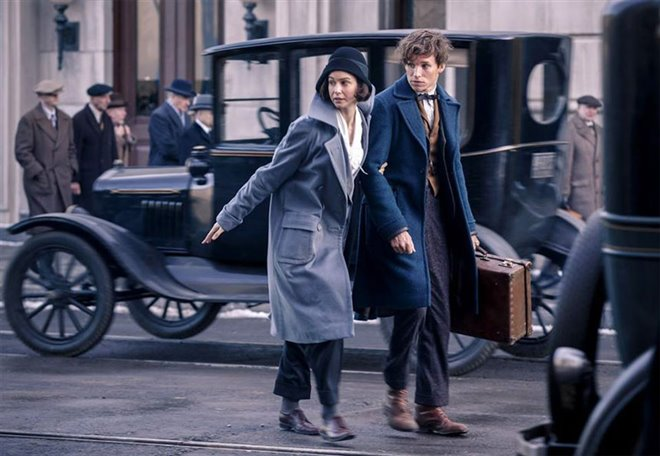 Fantastic Beasts and Where to Find Them Photo 3 - Large