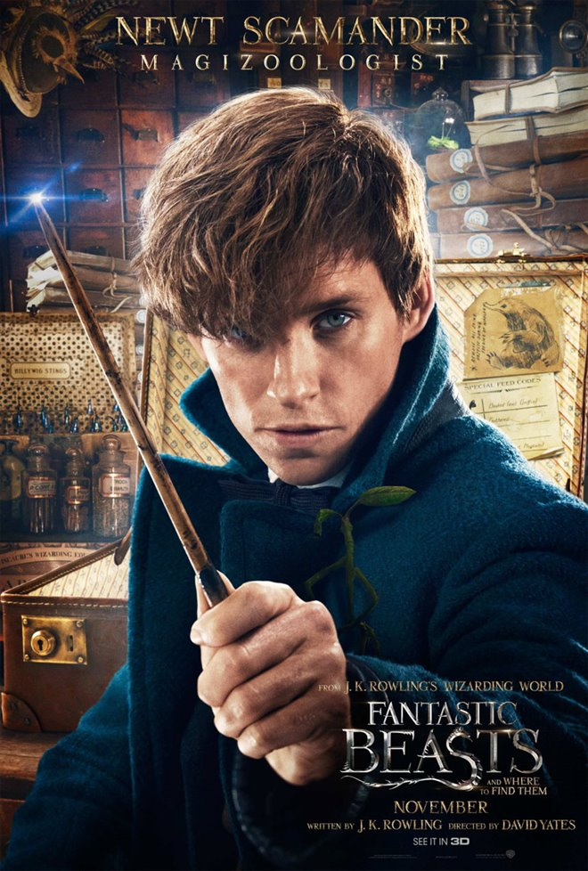Fantastic Beasts and Where to Find Them Photo 53 - Large