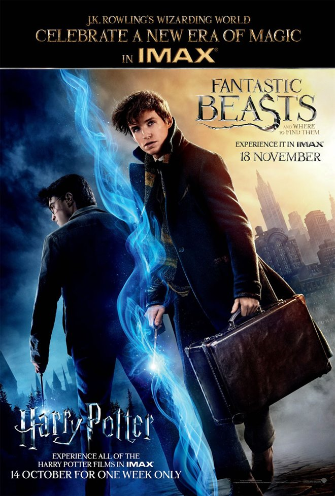 Fantastic Beasts and Where to Find Them Photo 57 - Large