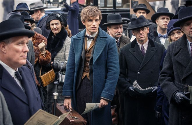Fantastic Beasts and Where to Find Them Photo 7 - Large