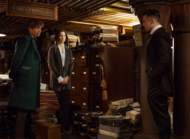 Fantastic Beasts and Where to Find Them Photo 15 - Large