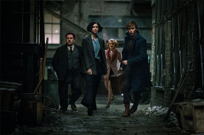 Fantastic Beasts and Where to Find Them Photo 23 - Large
