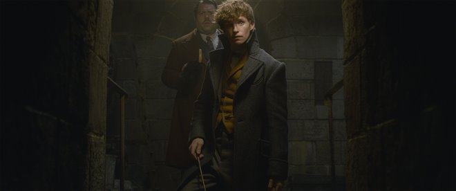 Fantastic Beasts: The Crimes of Grindelwald Photo 17 - Large