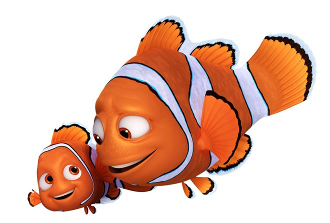 Finding Dory Photo 15 - Large