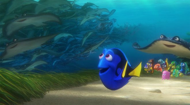 Finding Dory Photo 21 - Large
