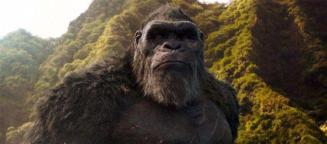 Godzilla vs. Kong Photo 6 - Large