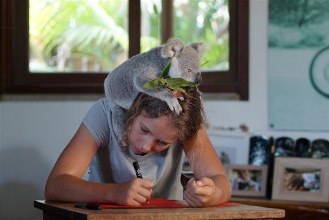 Izzy's Koala World (Netflix) Photo 1 - Large