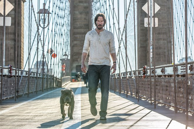 John Wick: Chapter 2 Photo 13 - Large