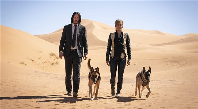 John Wick: Chapter 3 - Parabellum Photo 3 - Large