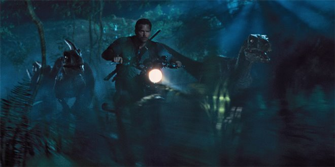 Jurassic World Photo 5 - Large