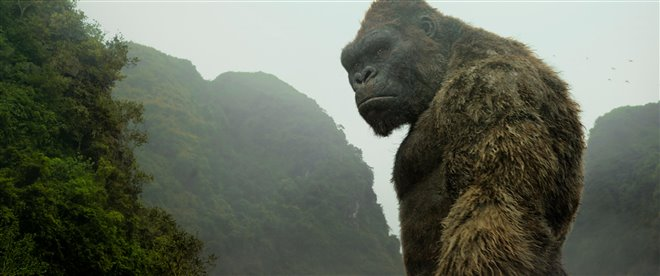 Kong: Skull Island Photo 15 - Large