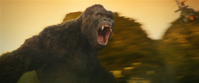 Kong: Skull Island Photo 17 - Large