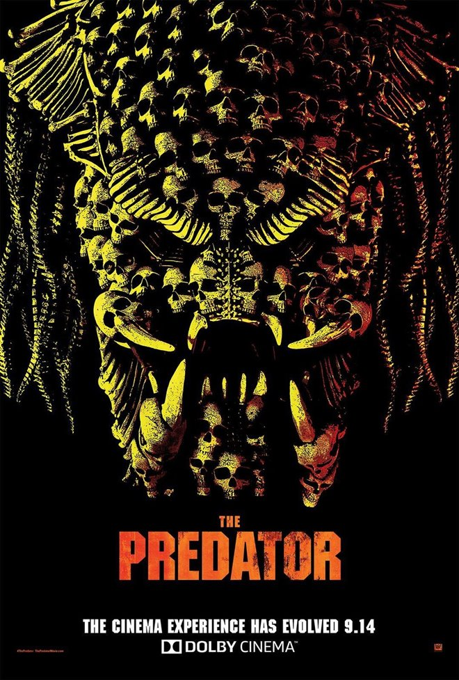 Le prédateur Photo 7 - Grande