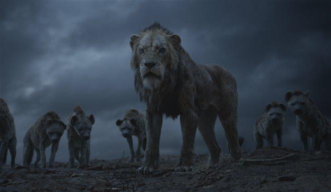 Le roi lion Photo 16 - Grande