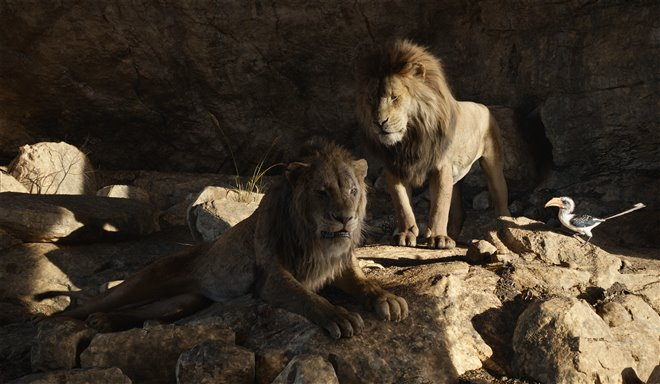 Le roi lion Photo 21 - Grande