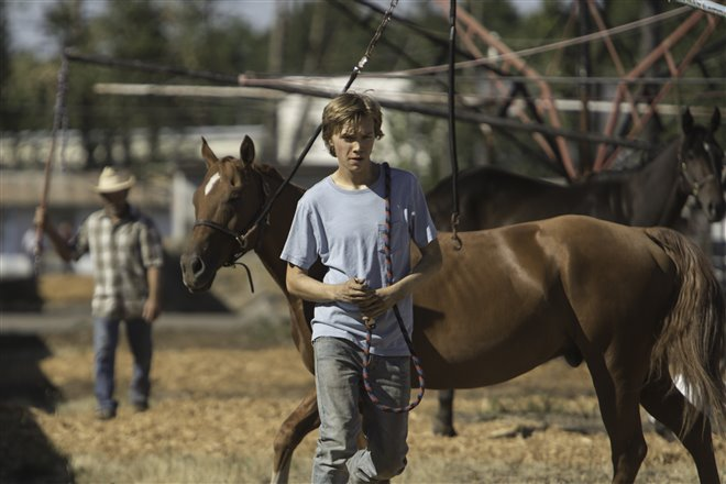 Lean on Pete Photo 5 - Large