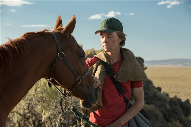 Lean on Pete (v.o.a.) Photo 11 - Grande