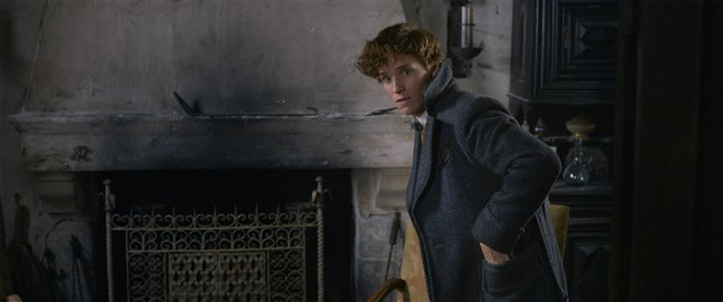 Les animaux fantastiques : Les crimes de Grindelwald Photo 27 - Grande