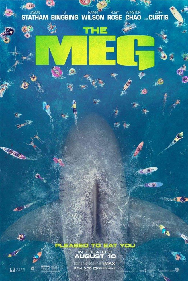 Mégalodon Photo 39 - Grande