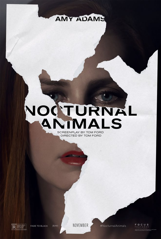 Nocturnal Animals Photo 4 - Large