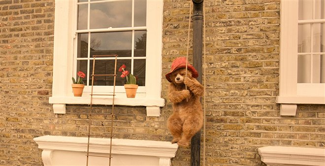 Paddington 2 Photo 1 - Large