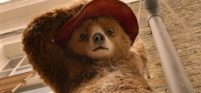 Paddington 2 Photo 3 - Large