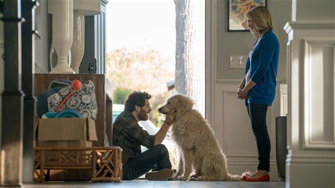 Par amour des chiens Photo 5 - Grande
