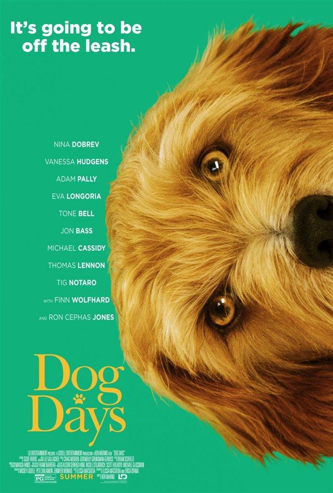 Par amour des chiens Photo 15 - Grande
