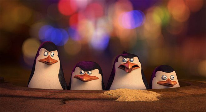 Penguins of Madagascar Photo 1 - Large