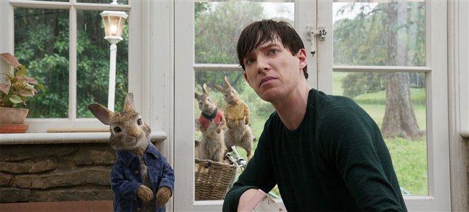 Peter Rabbit Photo 4 - Large
