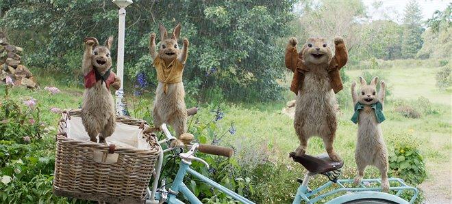 Peter Rabbit Photo 12 - Large