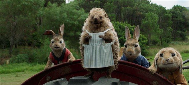 Peter Rabbit Photo 22 - Large