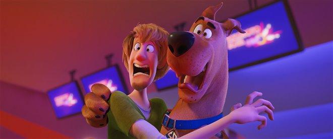Scooby! Photo 5 - Grande