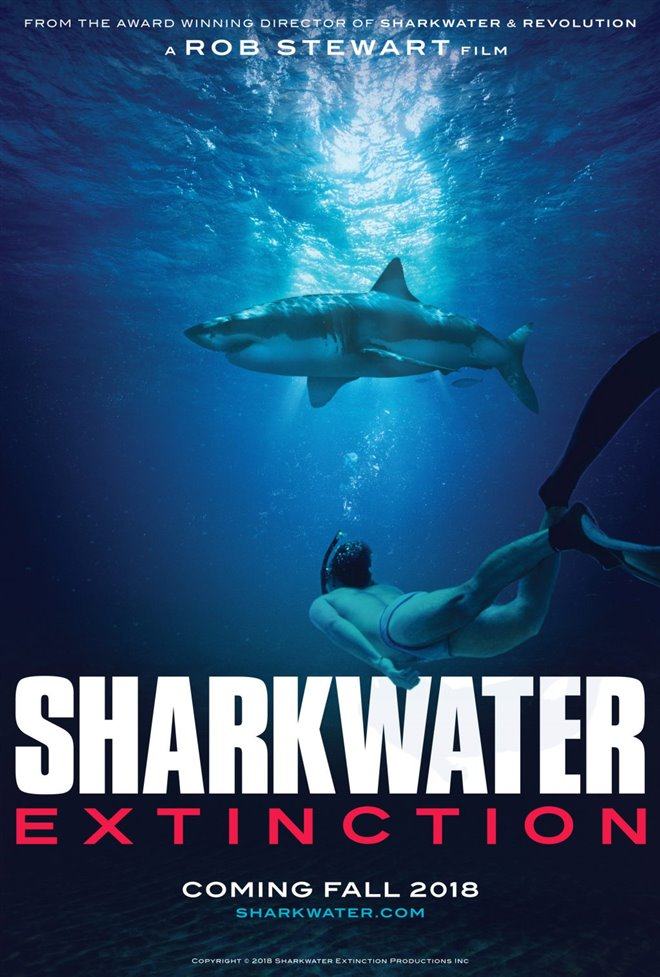 Sharkwater Extinction - Le film Photo 27 - Grande