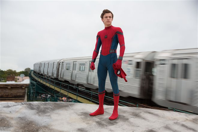 Spider-Man : Les retrouvailles Photo 17 - Grande