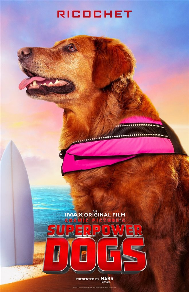Superpower Dogs Photo 4 - Large