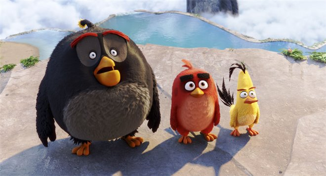 The Angry Birds Movie Photo 40 - Large